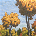 Autumn Canopy - 