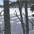 northern lake winter shadow - 