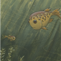 two fish - 